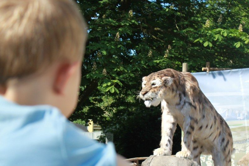 Zoo i Aalborg