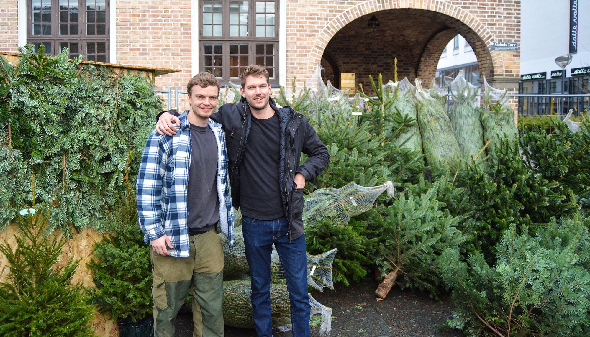 juletræer sælges aalborg