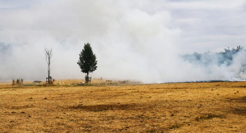 Brugt Gasgrill Nordjylland : Træder i kraft i dag afbrændingsforbud i hele nordjylland