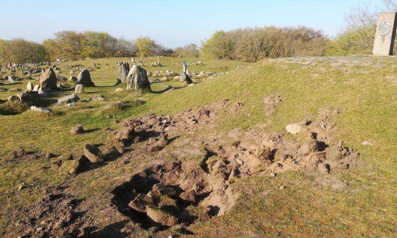 Foto: Nordjyllands Historiske Museum  Lindholm Højer er udgravet for mange år siden, så hvis gerningsmændene havde håbet at gøre et spektakulært vikingefund, så er der intet at komme efter.