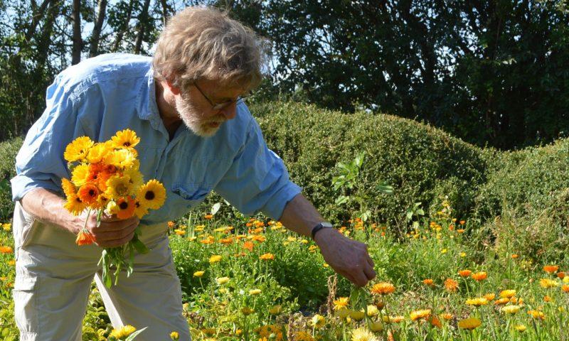 Jeg elsker blomsterne jeg elsker bierne
