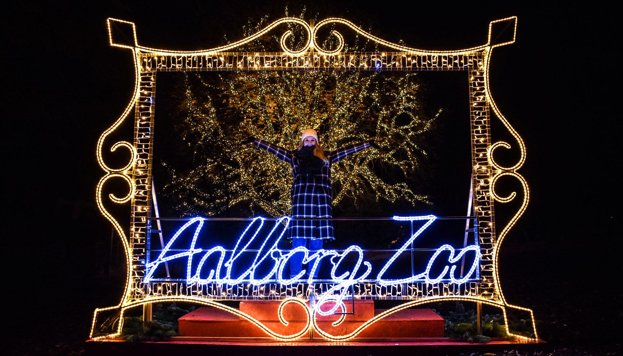 Åbningsdatoen er på plads: Jul i Zoo bliver en magisk oplevelse