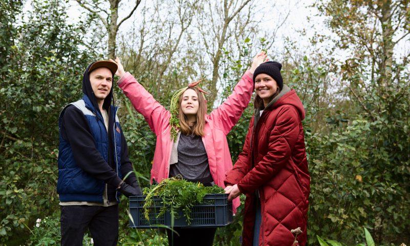 Teamet bag VeganDóttir: Rasmus, Kolbrún og Paula