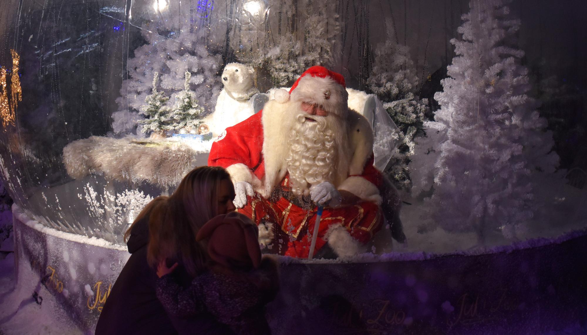 Glædelig corona-jul: Julemand i Aalborg Zoo hyldes af stort internationalt medie
