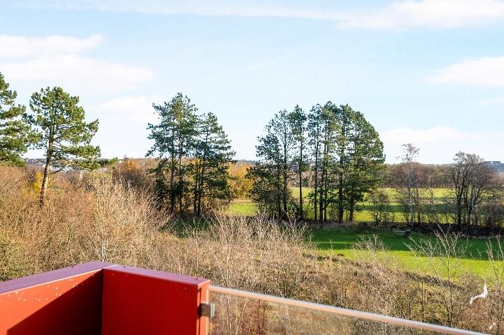 Lækre lejligheder med lækker udsigt: Parkbyen står snart klar til indflytning