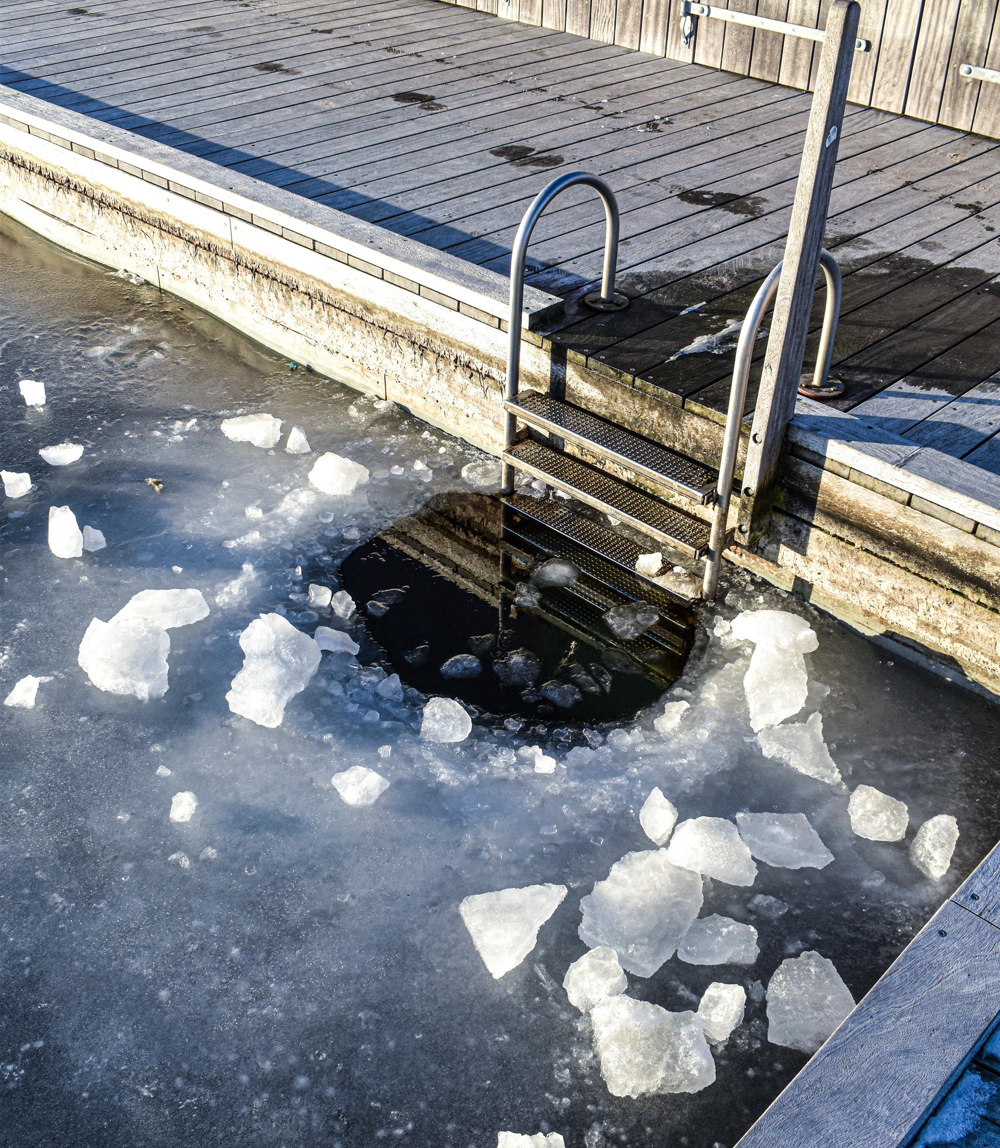Forårsrengøringen er færdig: I morgen fylder Vestre Fjordpark bassinerne