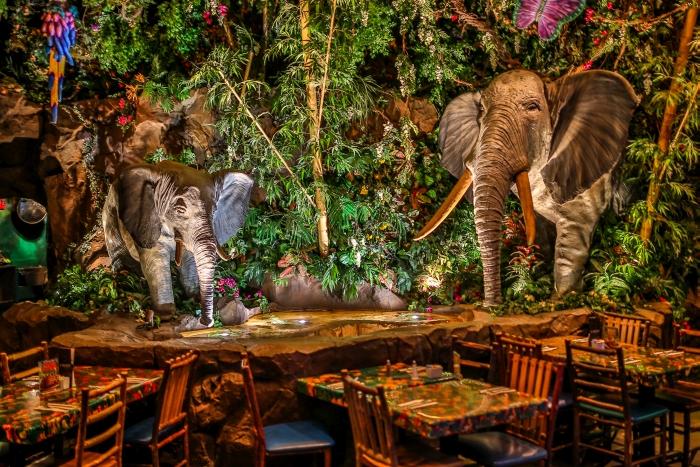 Sådan ser en af de udenlandske Rainforest Café's ud