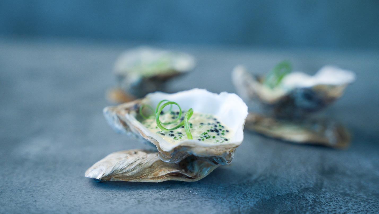 Med udsigt til Fjorden: Tre nye restaurant-koncepter åbner snart på Havnefronten