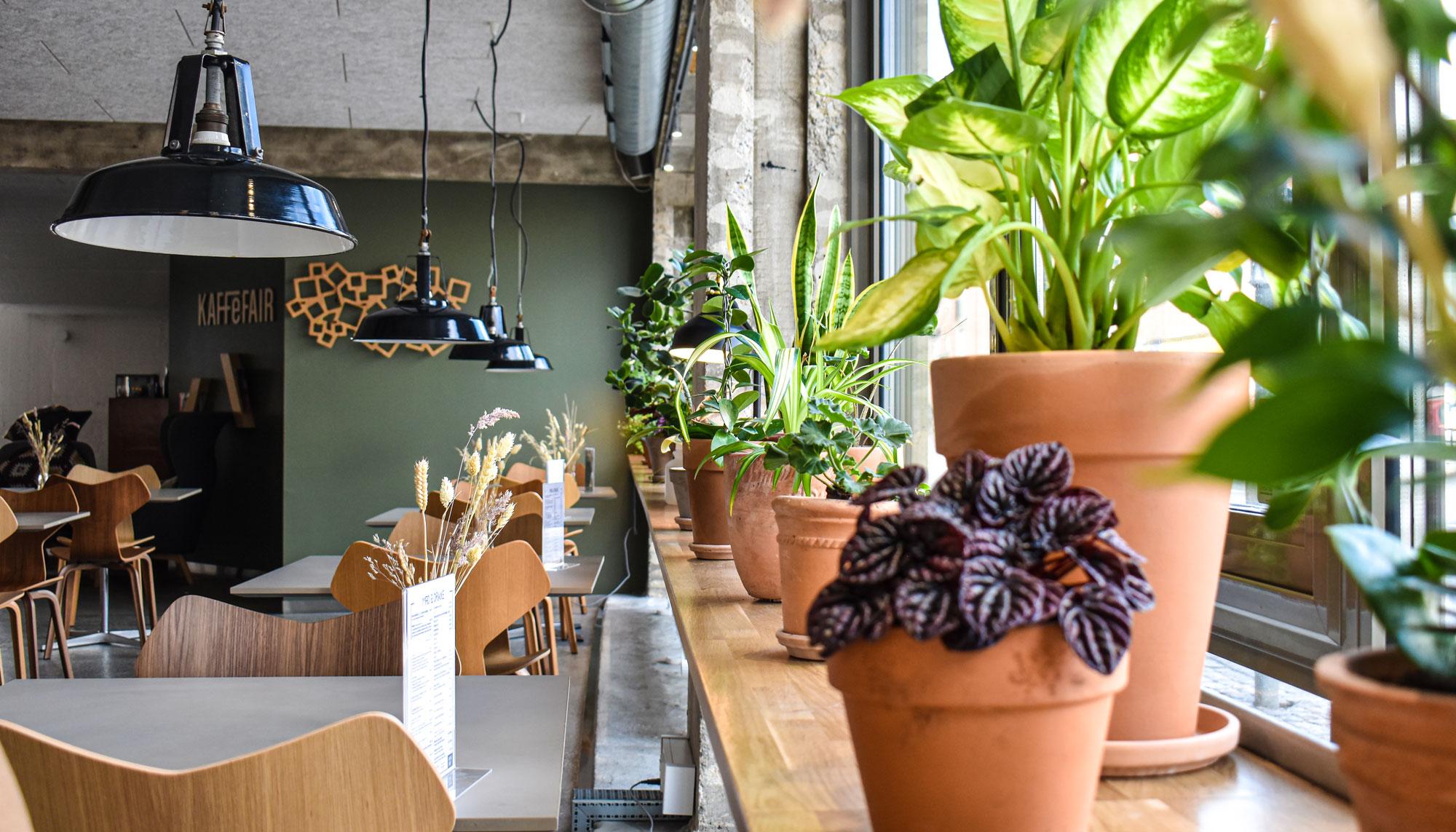 Tapas, folkemenu og ny værtinde: KaffeFair Strandvejen er klar til genåbning