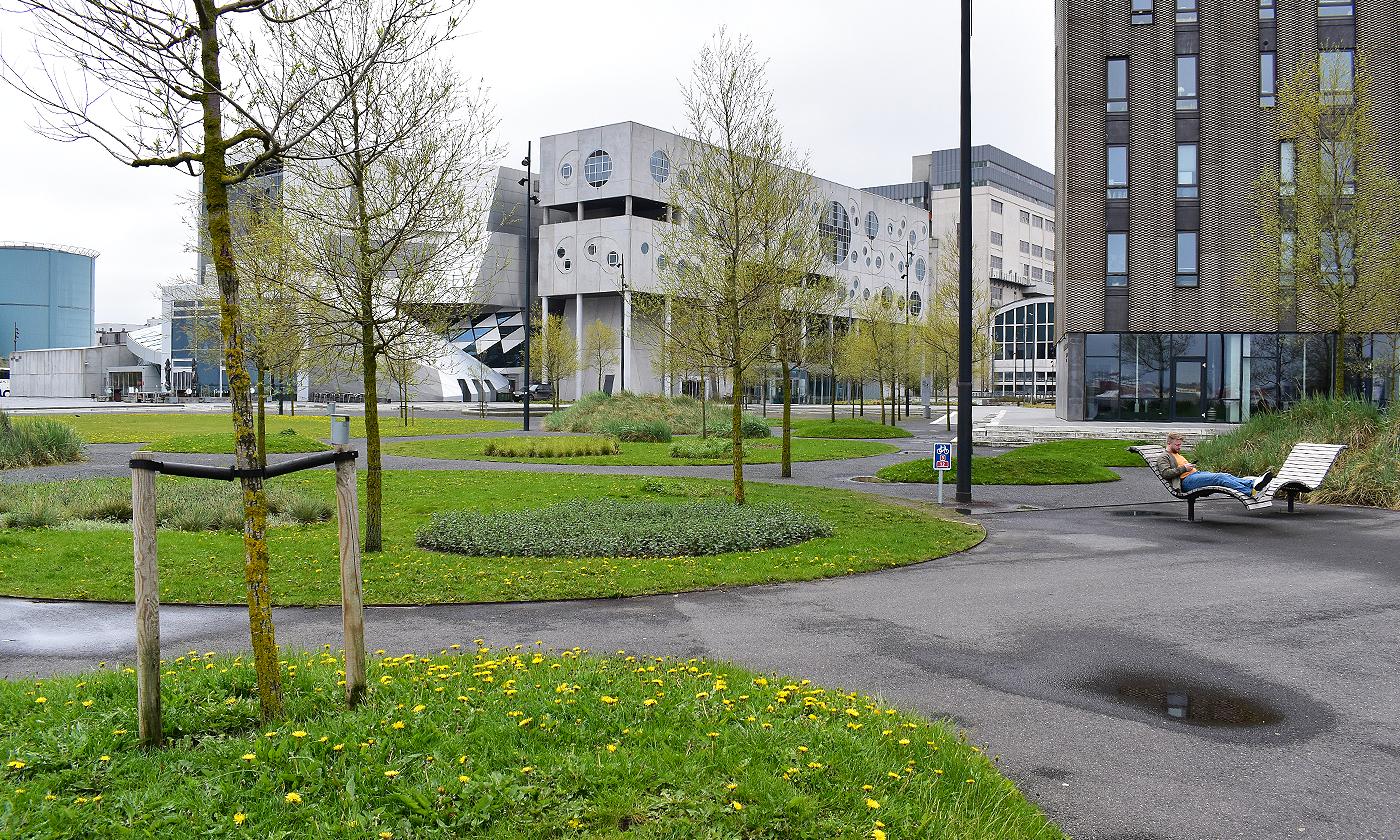 Fede studieboliger i Aalborg: Du kan flytte ind allerede nu