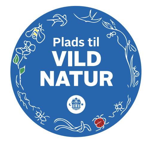Har du set det?: Vilde blomster og urter skyder op overalt i Aalborg
