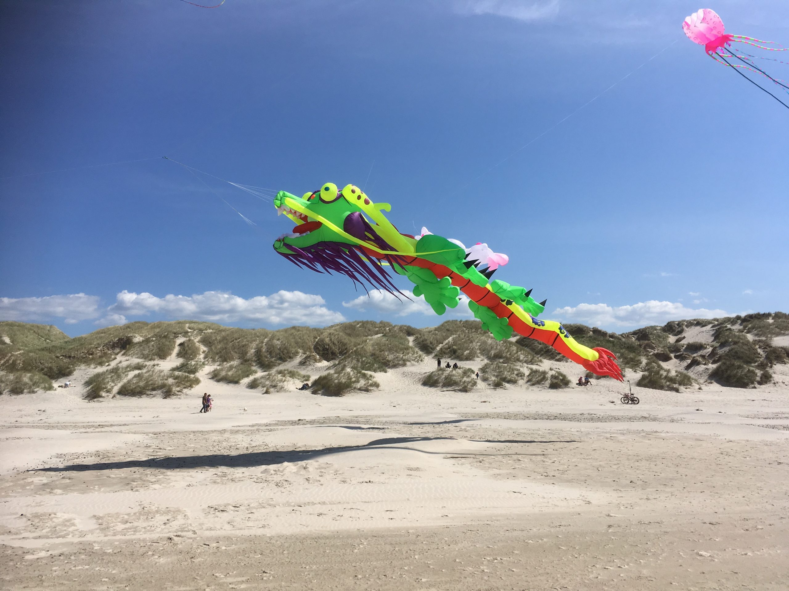 Kort køretur fra Aalborg: Store oplevelser i vente til Wind Festival