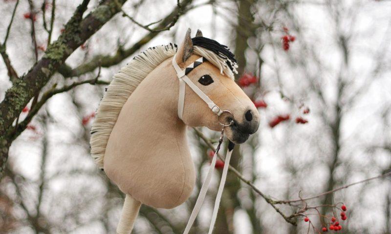 Photo of hobbyhorse by Eponi (www.eponi.fi)